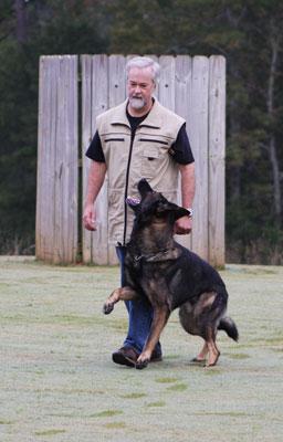 how to start schutzhund training